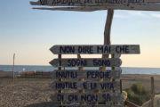 Ferragosto al Baubeach di Maccarese (Fiumicino-Roma), storica prima spiaggia in Italia per cani liberi e felici